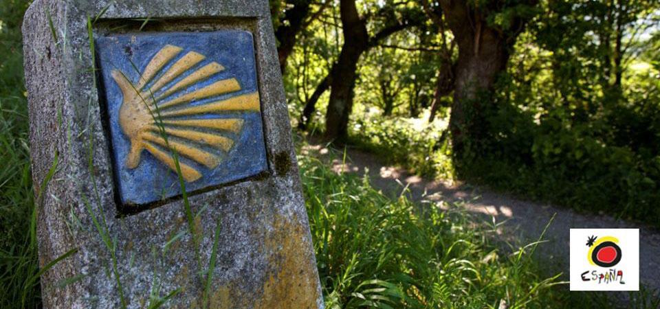 Utstilling: Alle veier fører til Galicia